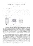 Chương 8. NUÔI CẤY MÔ THỰC VẬT VÀ VẤN ĐỀ LÀM SẠCH VIRUS Ở THỰC VẬT