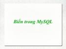 Biến trong MySQL
