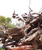 Nghề làm gỗ lũa ở Hà Nội