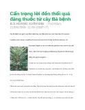 Cẩn trọng lời đồn thổi quá đáng thuốc từ cây Bá bệnh