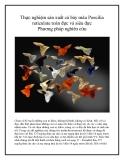 Thực nghiệm sản xuất cá bảy màu Poecilia reticulate toàn đực và siêu đực Phương pháp nghiên cứu