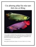 Các phương pháp lên màu tạm thời cho cá Rồng