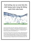 Ảnh hưởng của sự ozon hóa lên chất lượng nước trong hệ thống nước biển tuần hoàn