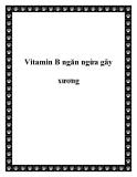 Vitamin B ngăn ngừa gãy xương