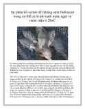 Sự phân bố và bài tiết kháng sinh flofenicol trong cơ thể cá rô phi nuôi nước ngọt và nước mặn ở 28oC