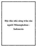 Độc đáo nhà sừng trâu của người Minangkabau Indonesia