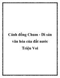 Cánh đồng Chum - Di sản văn hóa của đất nước Triệu Voi