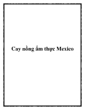 Cay nồng ẩm thực Mexico