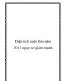 Diện tích nuôi tôm năm 2013 nguy cơ giảm mạnh