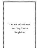 Tìm hiểu mô hình nuôi tôm Càng Xanh ở Bangladesh