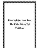 Các kinh Nghiệm Nuôi Tôm Thẻ Chân Trắng Tại Thái Lan