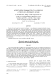 """BÁO CÁO """" ACCESS TO CREDIT OF ANIMAL PRODUCTION HOUSEHOLDS: A STUDY IN HAI DUONG PROVINCE, VIETNAM """""""