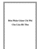 Bón Phân Giảm Chi Phí Cho Lúa Hè Thu