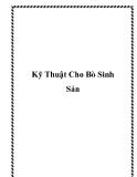 Kỹ Thuật Cho Bò Sinh Sản