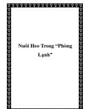 """Nuôi Heo Trong """"Phòng Lạnh"""""""