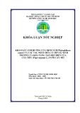 KHẢO SÁT ẢNH HƯỞNG CỦA DỊCH NẤM Phytophthora capsici VÀ CÁC TÁC NHÂN HÓA LÝ ĐẾN SỰ SINH TRƯỞNG VÀ KHẢ NĂNG TẠO ĐỘT BIẾN CỦA CÂY TIÊU (Piper nigrum L.) NUÔI CẤY MÔ