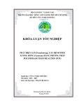 PHÁT HIỆN LOÀI Fusarium spp. GÂY BỆNH THỐI XƯƠNG RỒNG (Cactaceae) BẰNG PHƯƠNG PHÁP POLYMERASE CHAIN REACTION (PCR)