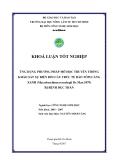 ỨNG DỤNG PHƢƠNG PHÁP MÔ HỌC TRUYỀN THỐNG KHẢO SÁT SỰ BIẾN ĐỔI CẤU TRÚC TẾ BÀO TÔM CÀNG XANH (Macrobrachium rosenbegii De Man 1879) BỊ BỆNH ĐỤC THÂN