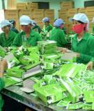 công nghệ sản xuất chè túi lọc
