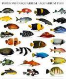 Bài giảng kỹ thuật nuôi thủy sản nước lợ