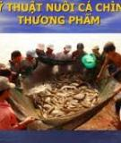 Bài giảng nuôi cá chình