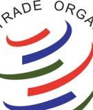 Báo cáo: Tổng quan về các hoạt động của WTO liên quan tới thương mại điện tử