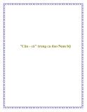Tài liệu tham khảo: 'Câu - cá' trong ca dao Nam Bộ