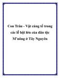 Con Trâu - Vật cúng tế trong các lễ hội lớn của dân tộc M'nông ở Tây Nguyên