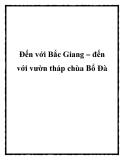 Đến với Bắc Giang – đến với vườn tháp chùa Bổ Đà
