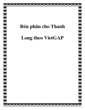 Bón phân cho Thanh Long theo VietGAP