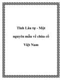 Tĩnh Lâu tự - Một nguyên mẫu về chùa cổ Việt Nam