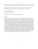 """Báo cáo """" Niềm tin vào phát triển: Một số nhận xét đối với nhận thức về tri thức bản địa """""""