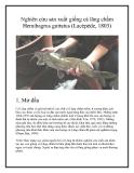 Nghiên cứu sản xuất giống cá lăng chấm Hemibagrus guttatus (Lacépède, 1803)