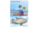 Phương pháp sản xuất giống và nuôi cá rô phi đạt tiêu chuẩn vệ sinh an toàn thực phẩm
