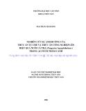 LUẬN VĂN: NGHIÊN CỨU SỰ ẢNH HƯỞNG CỦA THỨC ĂN TỰ CHẾ VÀ THỨC ĂN CÔNG NGHIỆP LÊN HIỆU QUẢ NUÔI CÁ TRA (Pangasius hypophthalmus) TRONG AO NUÔI THÂM CANH