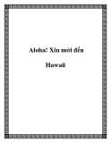 Aloha! Xin mời đến Hawaii