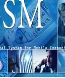 TỔNG QUAN HỆ THỐNG GSM