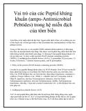 Vai trò của các Peptid kháng khuẩn (amps-Antimicrobial Pebtides) trong hệ miễn địch của tôm biển