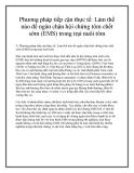 Phương pháp tiếp cận thực tế: Làm thế nào để ngăn chặn hội chứng tôm chết sớm (EMS) trong trại nuôi tôm