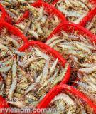 Biện pháp phòng trừ bệnh đốm đỏ, lở loét đối với cá trắm cỏ và một số loài cá khác?