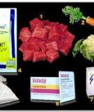Chế biến thức ăn dinh dưỡng dành cho cá Betta từ thịt bò