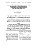 """Báo cáo """" Đánh giá khả năng kết hợp tính trạng năng suất của một số tổ hợp ngô rau lai diallel vụ xuân 2007 tại Gia Lâm, Hà Nội """""""