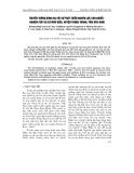 """Báo cáo """" Truyền thống dòng họ với sự phát triển nguồn lực con người - nghiên cứu tại xã Mão Điền, huyện Thuận Thành, tỉnh Bắc Ninh """""""