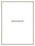 Thế nào là một CIO?