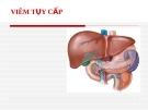 Bệnh học: Viêm tụy cấp