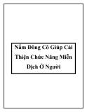 Nấm Đông Cô Giúp Cải Thiện Chức Năng Miễn Dịch Ở Người
