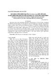 Khả năng chống bệnh đạo ôn (Pyricularia oryzae) bắc Việt Nam và đặc điểm nông sinh học một số dòng lúa chứa gen chống bệnh