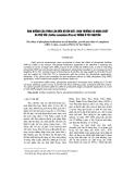 Ảnh hưởng của phân lân đến độ ẩm đất, sinh trưởng và năng suất cà phê vối (Coffea canephora Pierre) trồng ở Tây Nguyên