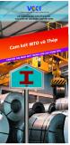 Cam kết WTO về thép - Cam kết gia nhập  WTO trong lĩnh vực hàng hóa