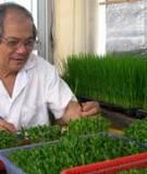 Hiệu quả của phân hữu cơ và phân vi sinh trong sản xuất lúa và cây trồng cạn ở đồng bằng sông Cửu LongNG NG AXETILEN)